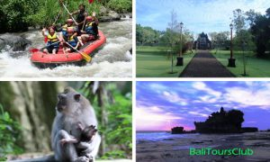 Ayung Rafting Tour