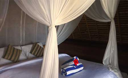 Kamar hotel Dream Beach Huts