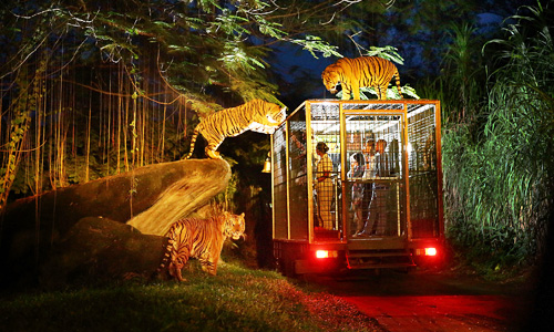 Night Safari di Bali Safari and Marine Park