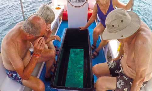 Glass Bottom boat - Snorkeling di Nusa Lembongan
