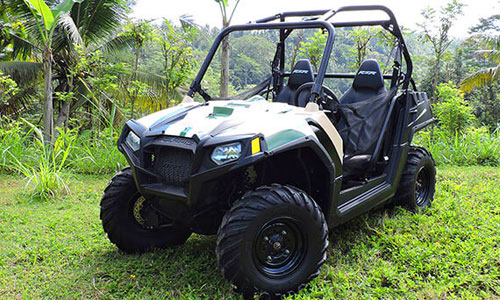 Kendaraan Polaris - Mason Jungle Buggies
