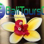 Kontak Kami Bali Tours Club