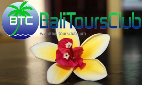Kontak Kami - Bali Tours Club
