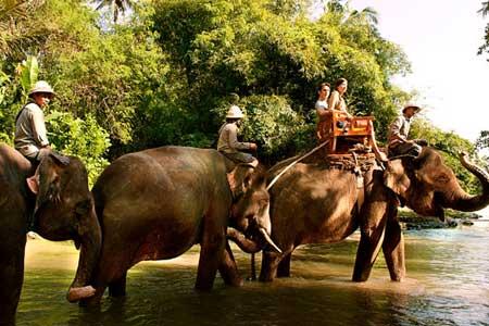 Wisata naik gajah di Bali Zoo Park