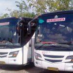 Tipe bus pariwisata Bali