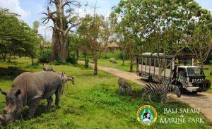 Taman Bali Safari Marine Park