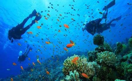Scuba Diving di Bali