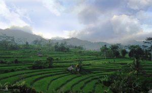 Desa Tabola di Sidemen