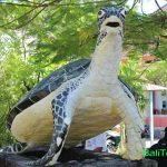 Konservasi penyu di Pulau Serangan