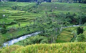 Sungai Telaga Waja