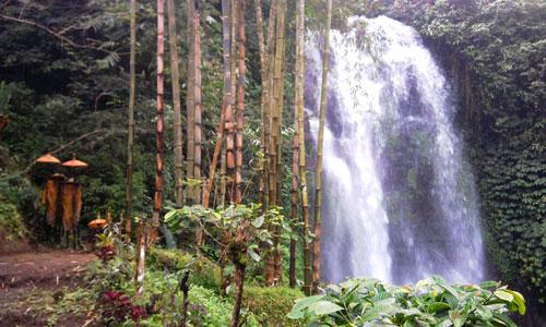 Destinasi wisata air terjun Munduk di Bali Utara