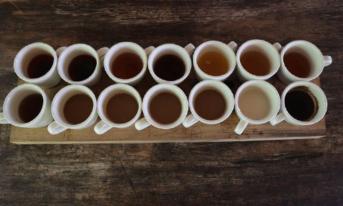 Hidangan kopi luwak di Bali