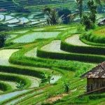 Objek wisata di Tabanan