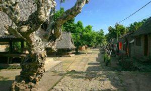 Desa Bali Aga Tenganan
