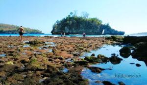 Pantai Crystal Bay Nusa Penida