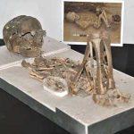 Museum Manusia Purba
