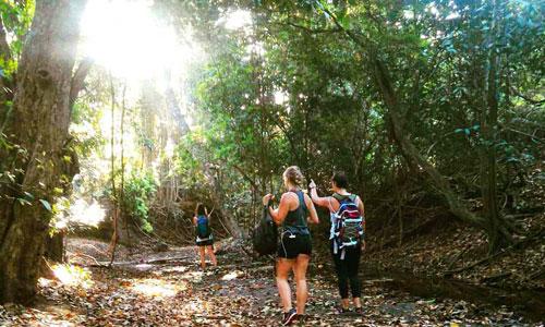 Trekking di Taman Nasional Bali Barat