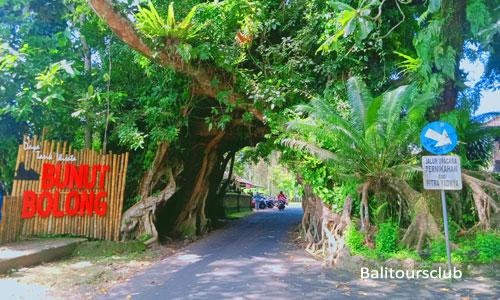 Tempat wisata Bunut Bolong