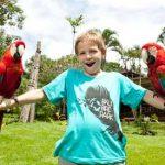 Taman Burung Bali Bird Park
