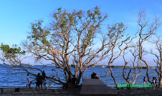 Dream Island - Taman Inspirasi Mertasari