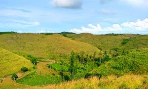 Objek wisata Bukit Teletabbies Nusa Penida