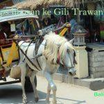 Tips liburan ke Gili Trawangan