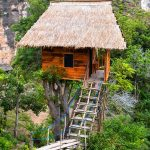 Rumah Pohon Batu Molenteng