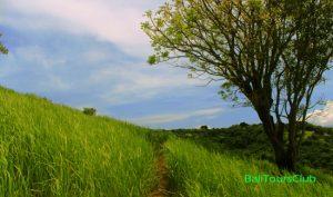 Objek wisata Bukit Belong di Gunaksa Klungkung