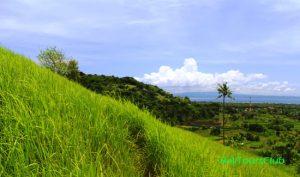 Pemandangan di Bukit Belong Gunaksa