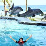 Wake Bali Dolphin