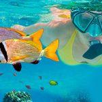 Snorkeling di Nusa Lembongan dan Nusa Penida Tour