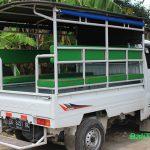 Transportasi di Nusa Lembongan