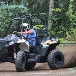 Mason Jungle Buggies di Taro