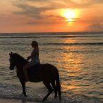 Wisata naik Kuda di Gili Trawangan