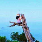 Pohon Cinta Mati Nusa Penida