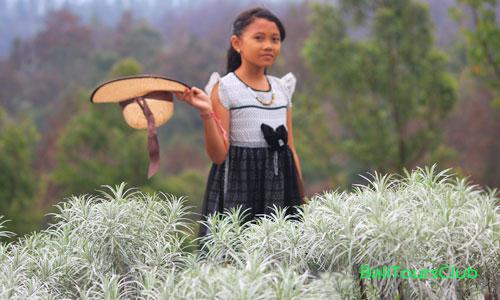 Objek wisata Padang Bunga Kasna di Temukus