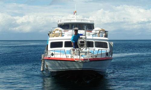 Samaya One Fast Cruise