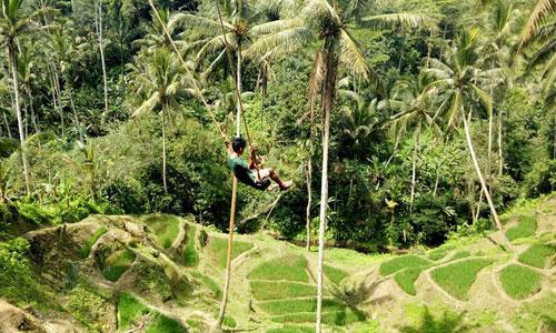 Wahana Ayunan - swing di Alas Harum Agrowisata