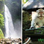 Air Terjun Nungnung – Sangeh Tour