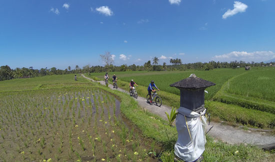 Bersepeda di kawasan Ubud Bali