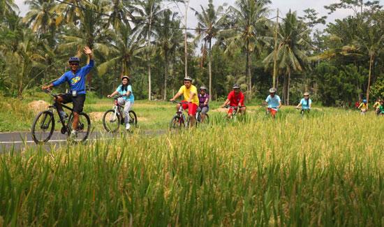 Cycling tour bersama BIO Bali Adventure