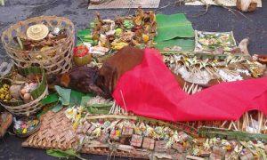 Caru godel dalam tradisi Megebeg-gebegan
