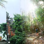 Tour Ke Bali Barat menuju Jembrana