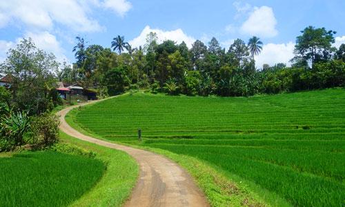 Akses jalan menuju objek wisata air terjun Sing Sing Angin