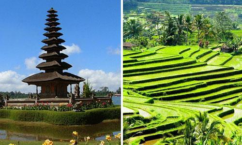 Objek Wisata Di Bali Yang Cocok Untuk Orang Tua