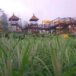Pondok Edelweis Bali