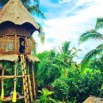 Firefly Eco Lodge – Rumah Bambu di Ubud