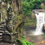 Tegalalang Ubud – Air Terjun Tegenungan Tour