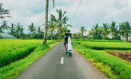 Scooter tour di Tegalalang Bali