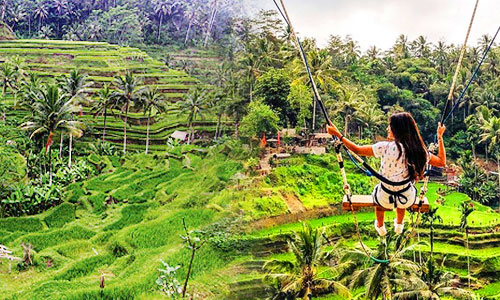Tegalalang - swing tour di Bali